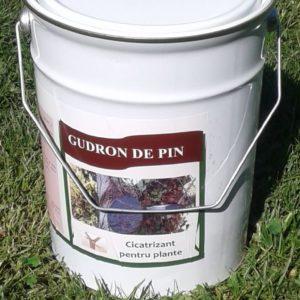 Гудрон де пин